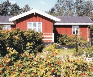 sjællandsodde15-2019